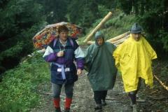 AHE 1993 1 Tannh. Tal